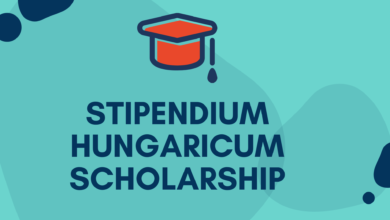Photo of Stipendium Hungaricum Scholarship