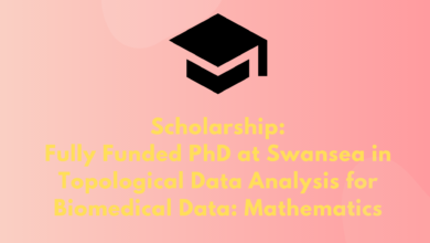 Photo of Scholarship: Fully Funded Ph.D. at Swansea in Topological Data Analysis for Biomedical Data: Mathematics