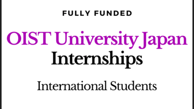 Photo of Fully Funded OIST University Japan Internship Program 2020