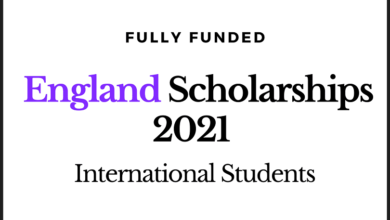 Photo of Fully Funded The University of Sheffield  Scholarships In England 2020