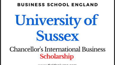 Photo of University of Sussex 2020 Chancellor's International Business Scholarship